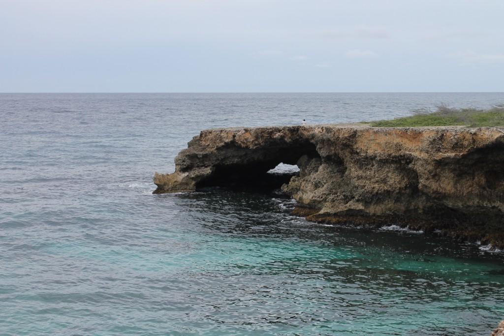 Non Profits Stichting Uniek Curacao