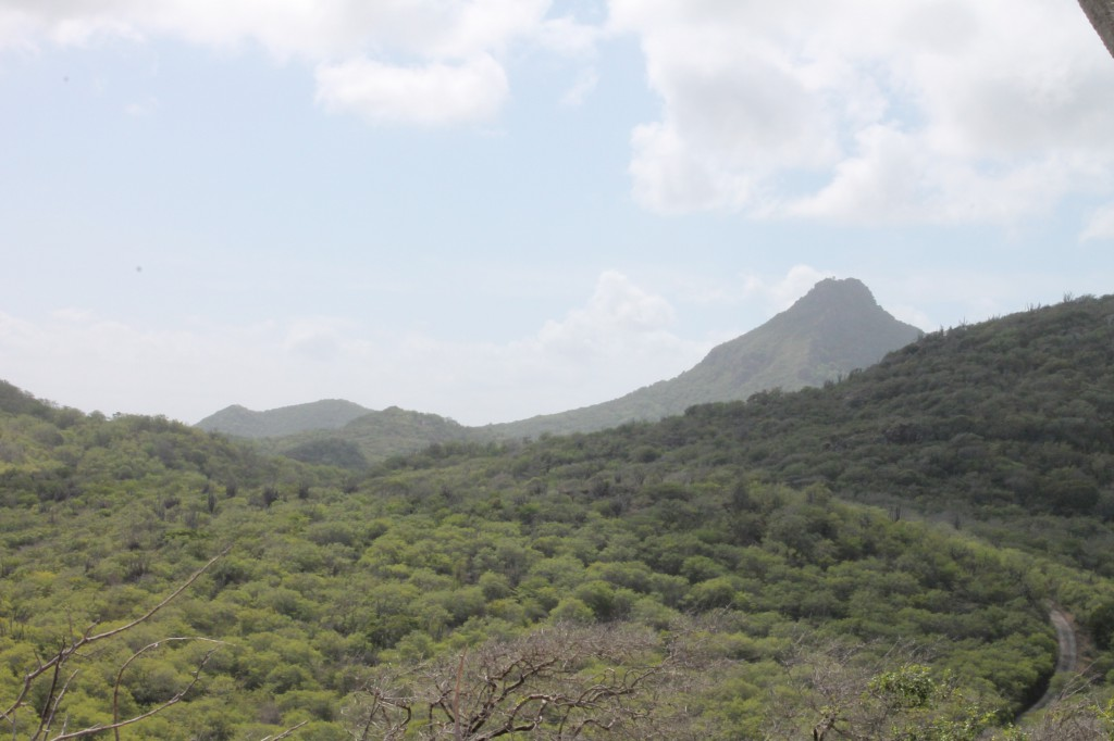 Curacao bezienswaardigheden Christoffelpark