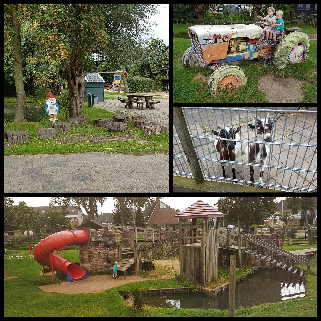 kinderboerderij-de-heuvel-2