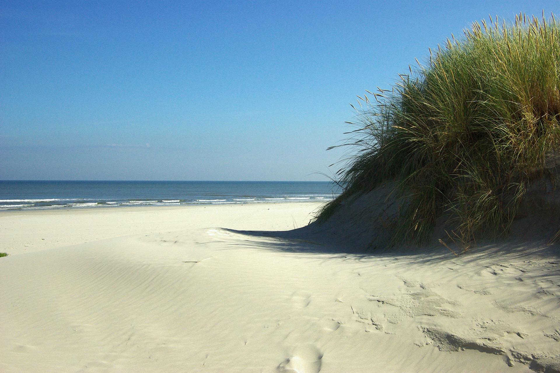 strand waddeneiland
