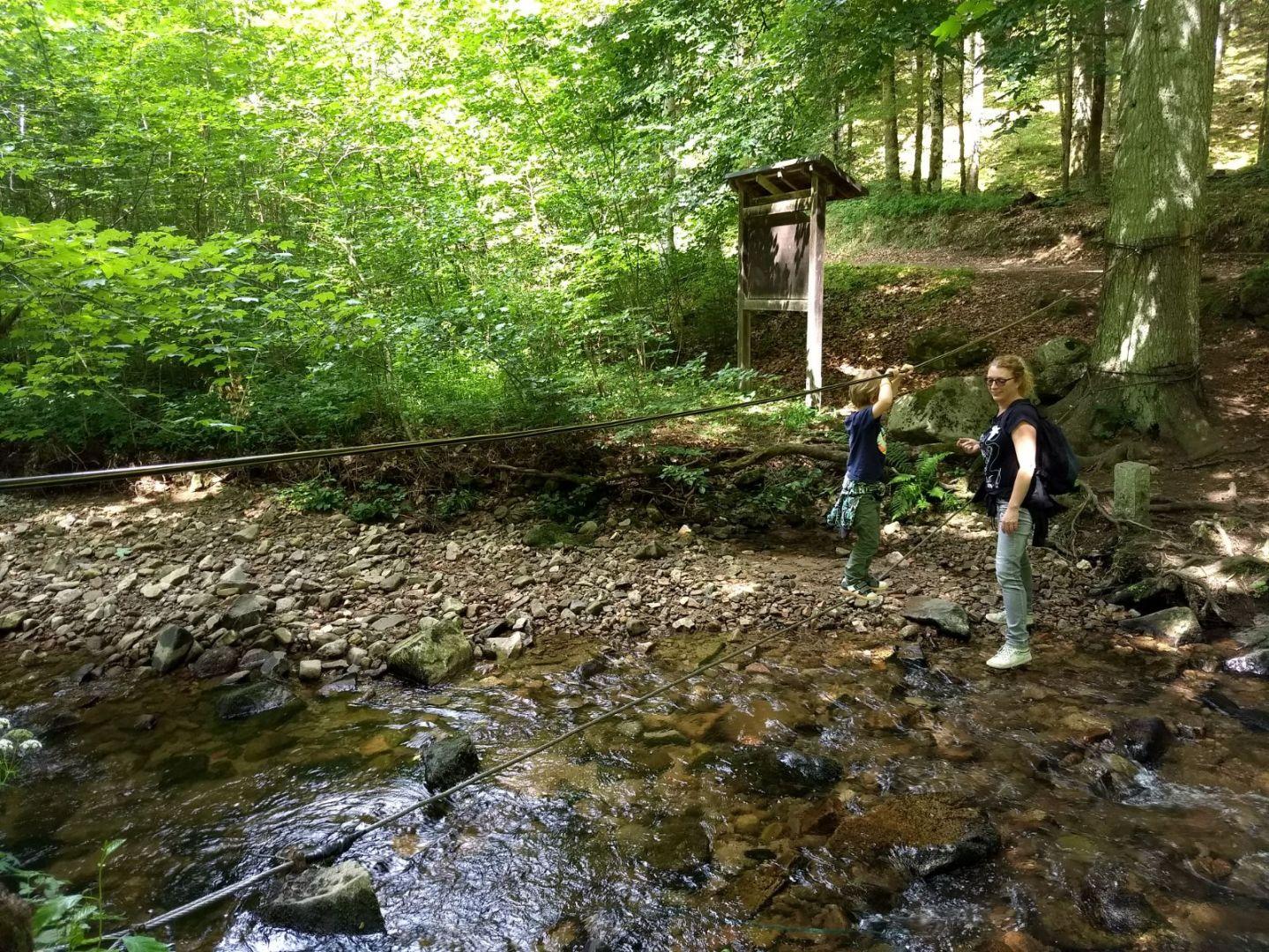 Natuurbelevenispad bij Oberholz-Birkendorf - touwbrug