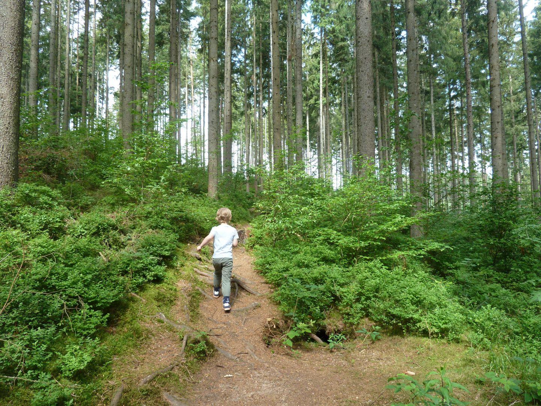 Schlühüwanapark-klimmen