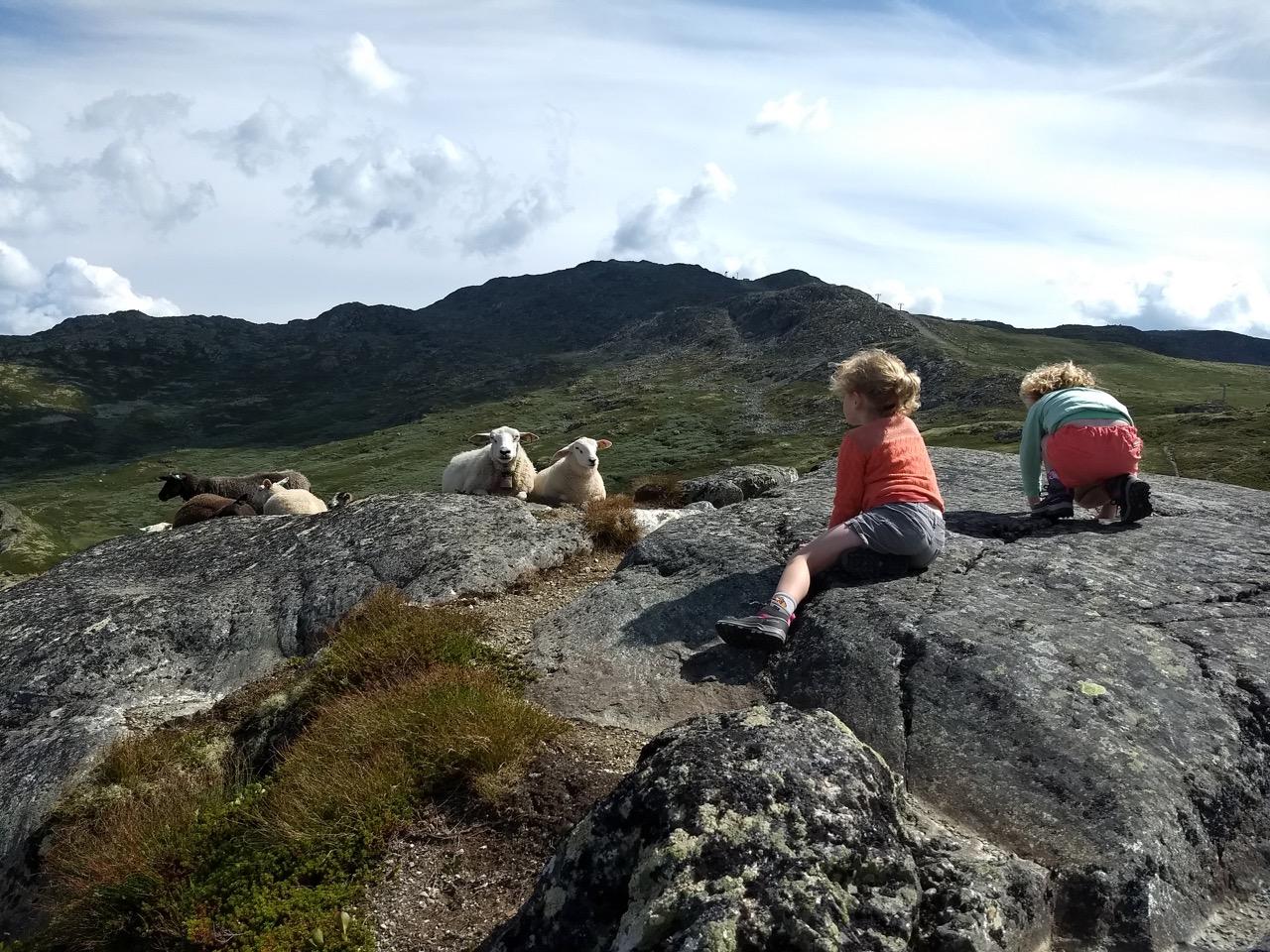 wandelen in Noorwegen met kind
