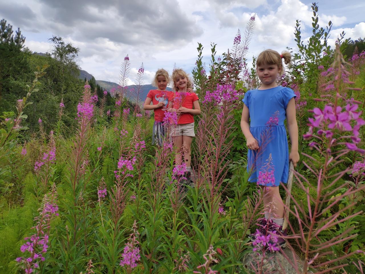 Noorwegen met kinderen vakantie