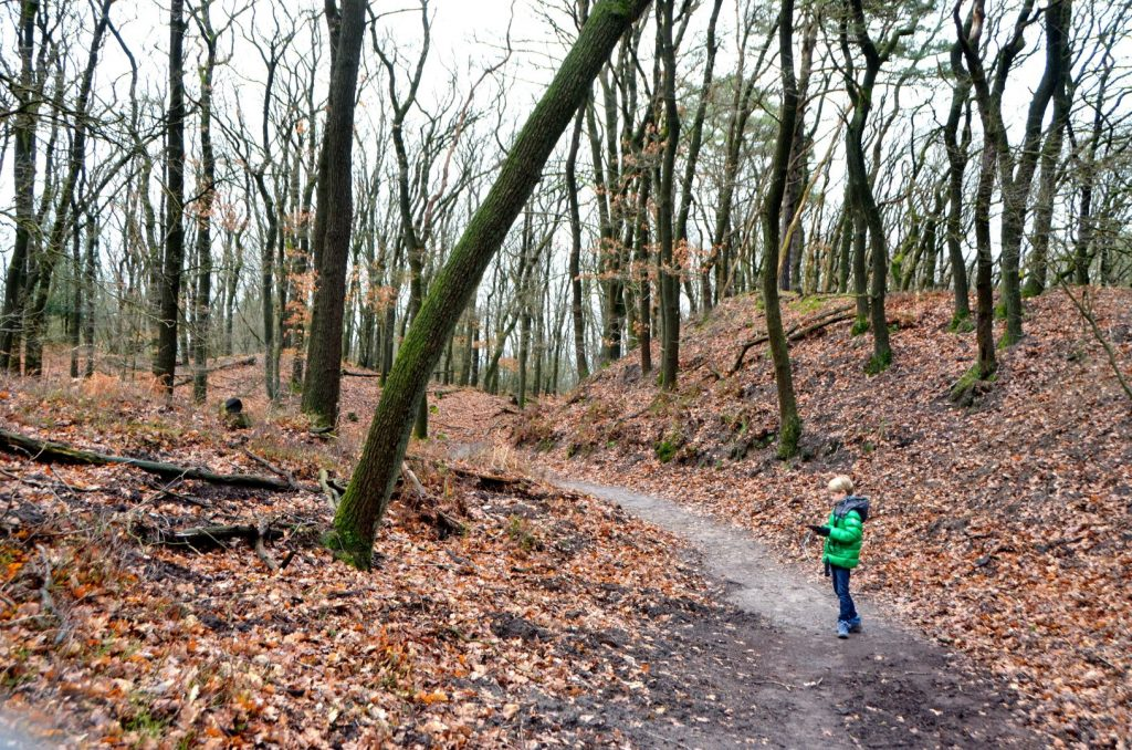 the Nature Game in NP de Hoge Veluwe