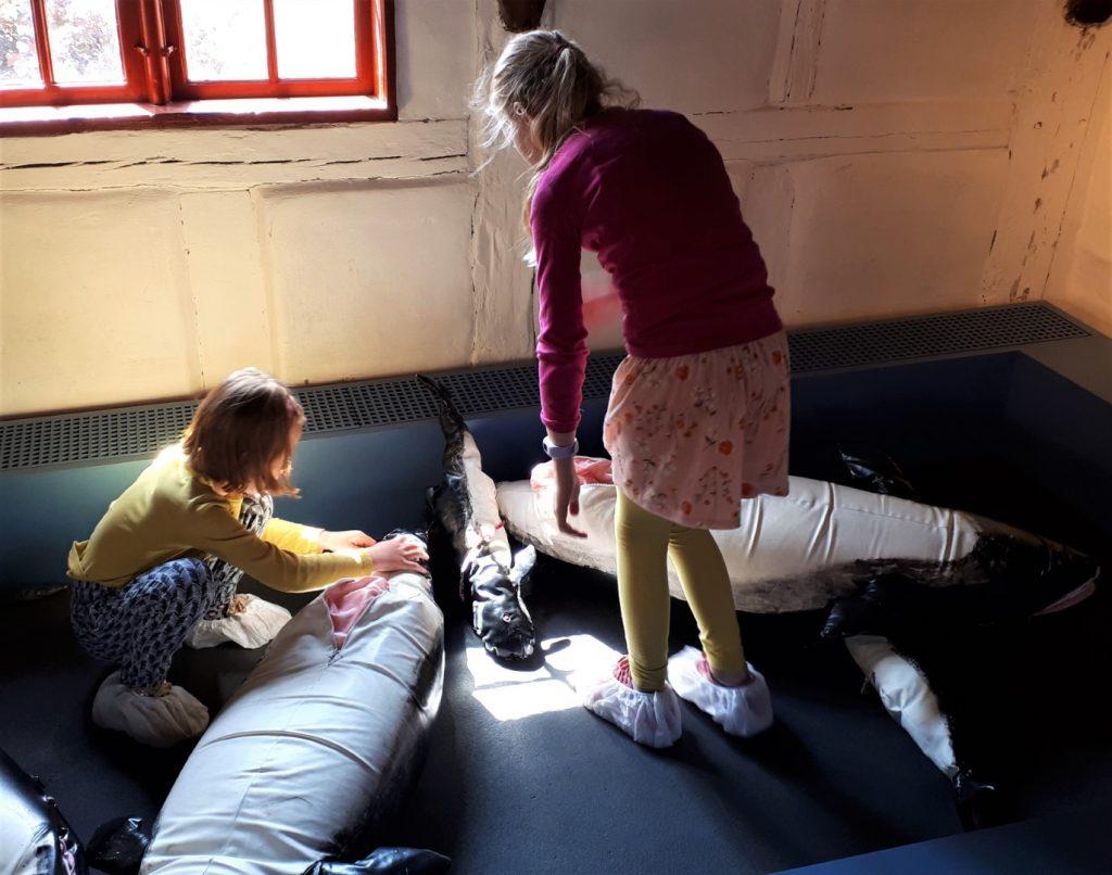 Middelfart met kinderen