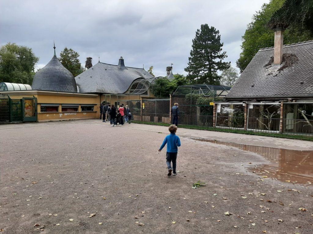 dierentuin Straatsburg