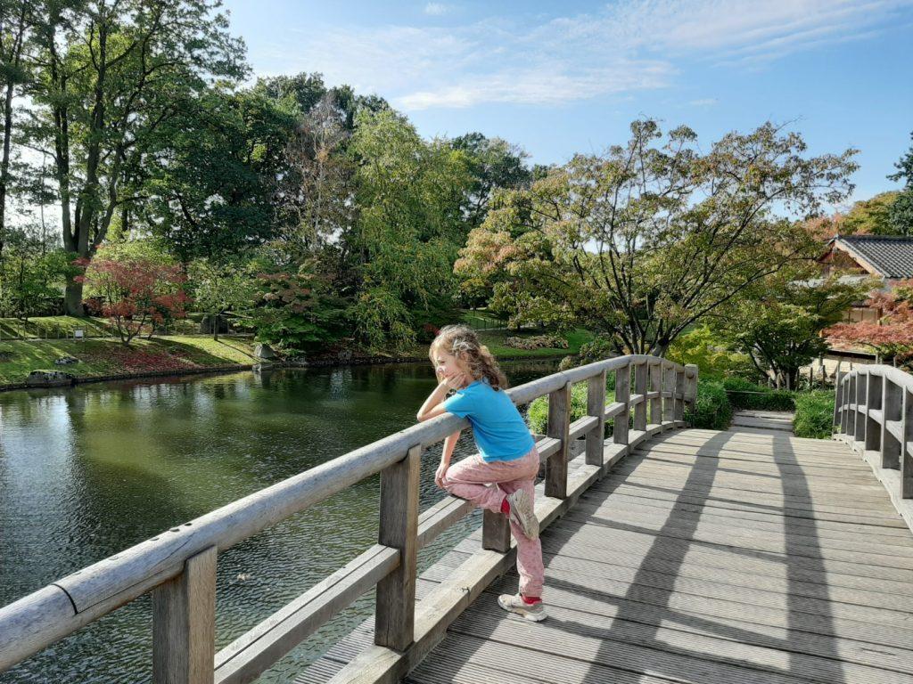 Japanse tuin Hasselt met kinderen bezoeken