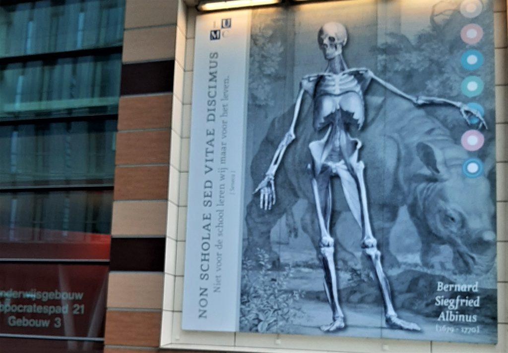 Anatomie Museum Leiden
