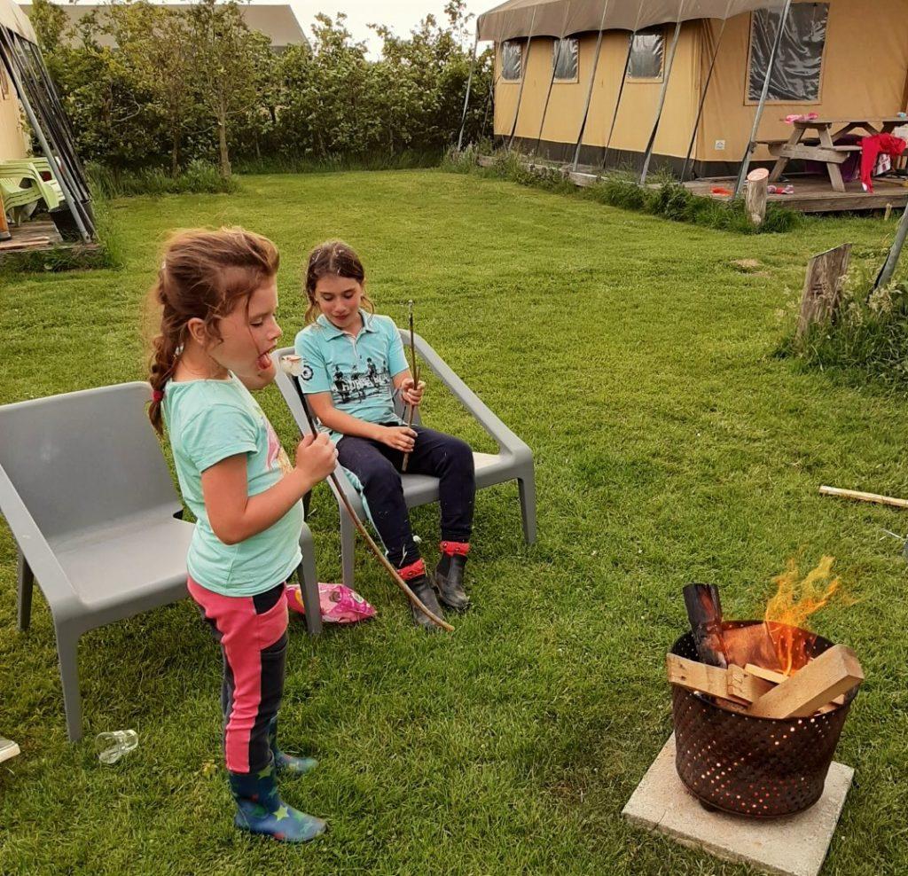Farmcamps Fleur Stables met kids