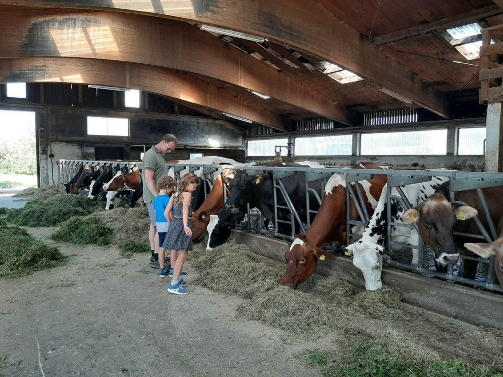 Boerderijvakanties met kinderen